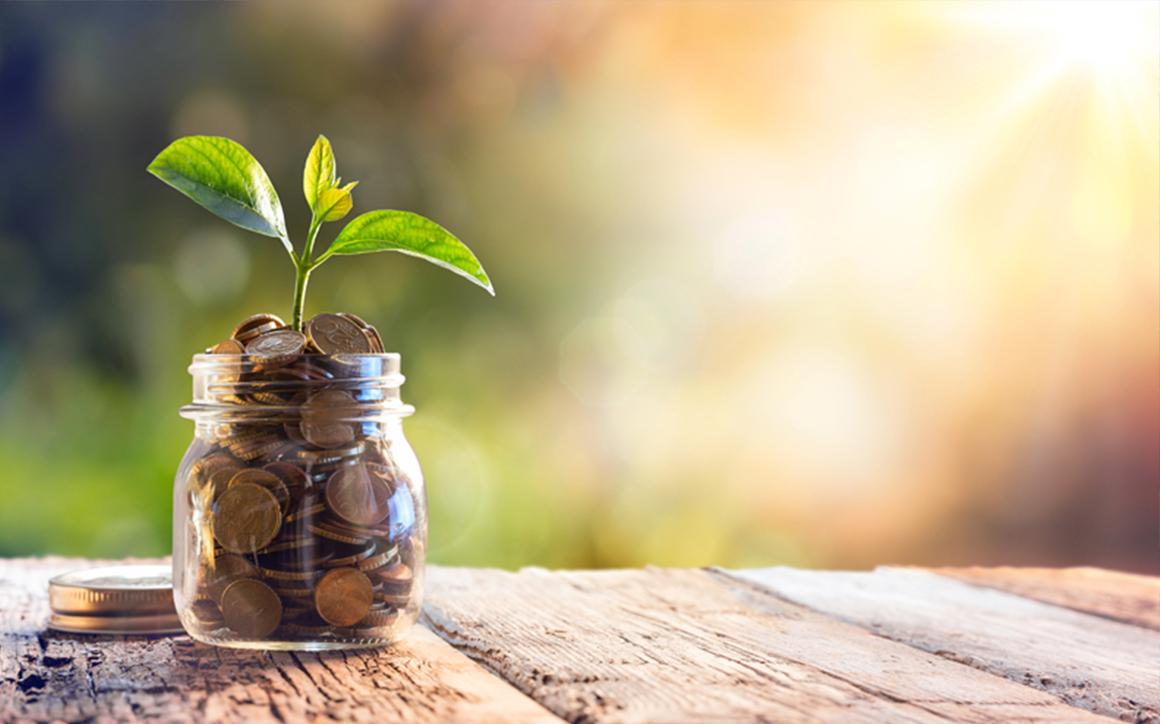 pourquoi investir en immobilier neuf loi pinel défiscalisation